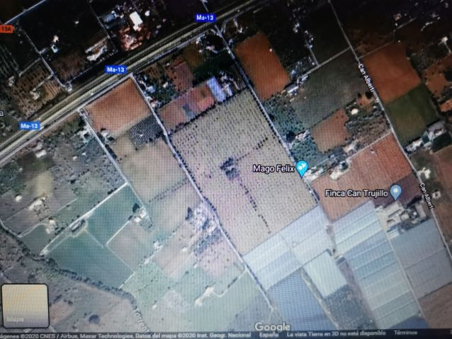 Huge plot of agricultural land for sale in Inca mallorca  Investment opportunity